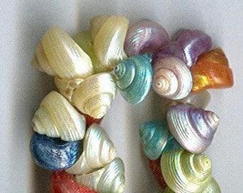 vintage italian shell beads bright assorted color mixture 1950s