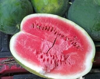 Black Diamond Watermelon Heirloom Seeds - Non-GMO, Open Pollinated, Untreated