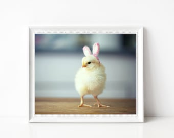 Photo Print 8x10 Yellow Chick Wearing Pink Bunny Rabbit Ears Easter Bunny Photograph