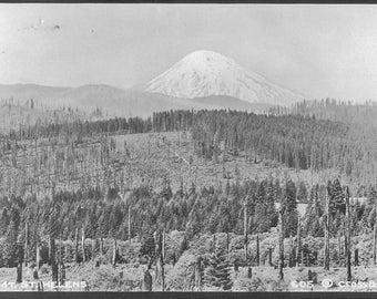 Mount St Helens Undated Real Photo Postcard #605 Cross & Dimmitt - Washington