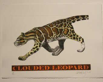 Clouded Leopard - Etching and Aquatint with hand etched nameplate by D.R Wakefield