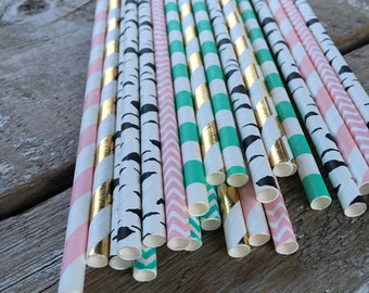 Pink teal gold girl teepee tee pee native BE BRAVE boho bow arrow paper straws birthday party baby shower aztec tribal first pow wow birch