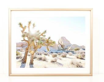 Palm Springs Photo, Desert Photo, Joshua Tree, Coachella, California Photography, Large Photo Print, Desert Morning