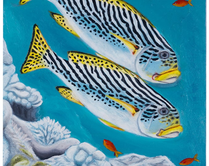 Sweetlips - original oil painting on box canvas by Christian Turner