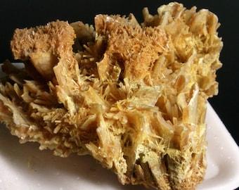 Gypsum from Australia