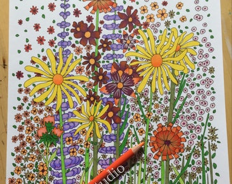 wildflowers adult coloring page colour in page instant digital download pdf