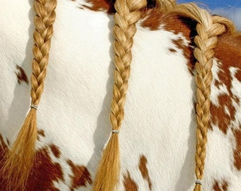 Horse Fine Art Photography,Texas,Rustic Southwest Home Decor-Western Art