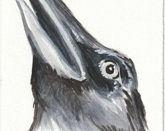 Print - Crow Watercolor