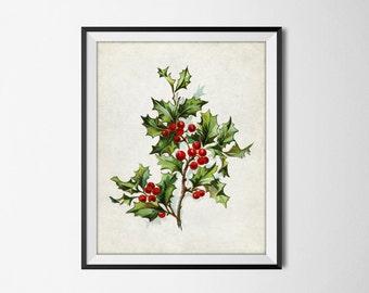 Christmas Holly Wall Art - Antique Christmas Art - Chistmas Printable Winter Seasonal Holiday Print Home Decor - INSTANT DOWNLOAD #2516