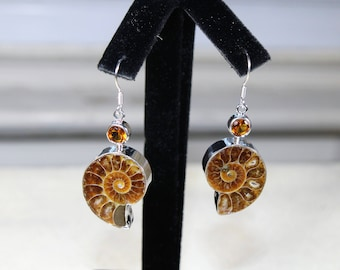 Ammonite fossile earrings, drop earrings, sterling silver earrings, dangle earrings