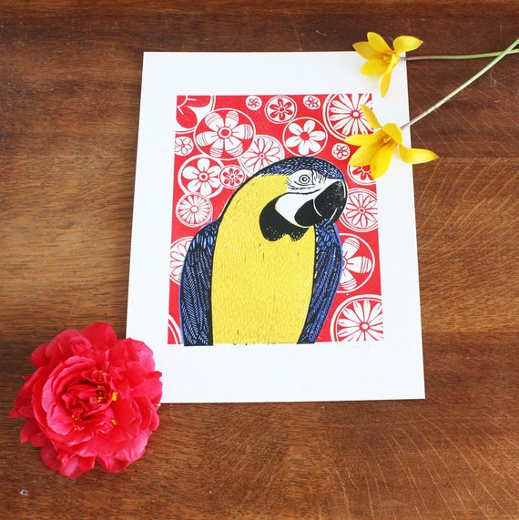 linocut print - blue and gold macaw - parrot - Kat Lendacka - 5-color linocut print - signed open edition - free postage in UK - printmaking