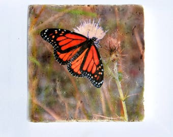 Monarch Butterfly Stone Coaster - Orange Black Butterfly Photo - Housewarming Gift Ready to Ship - Butterfly Wedding Birthday Drink Coaster