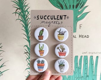 Succulent Magnets--Set of 6