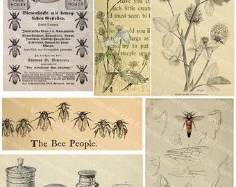 Bees and Honey Jars Digital Collage Sheet, Vintage Illustrations, Printable Download