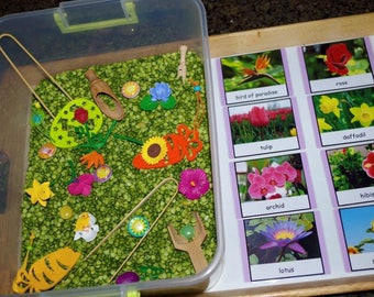 Flowers Montessori 3-part cards or matching activity  with optional miniatures