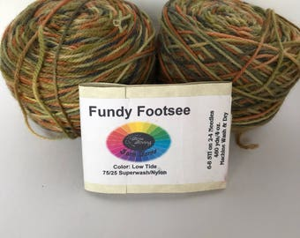 Fundee Footsee from Done Roving Farm Yarns-Low Tide - 2 skein lot...free domestic shipping