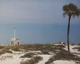 Beach Dune Lifeguard Photo, Palm Tree Photography, Florida Travel Art, Sand Dunes Tropical Coastal House Decor, Nautical Home Decor Wall Art