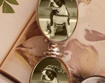 Letter Opener Boston Terrier dog  Robin Hood Animal Lover Office Decor