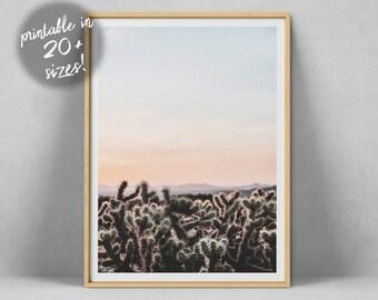 Cactus imprimable imprimer, Art mural du Sud Ouest, décor de désert, cactus affiche, Arizona Art, Cactus Wall Art Digital Download Cactus photographie