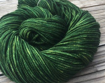 Land Ho! Green Hand Dyed Worsted Weight Yarn Forest Green Hand Painted yarn 218 yards Superwash Merino Wool treasure goddess swm