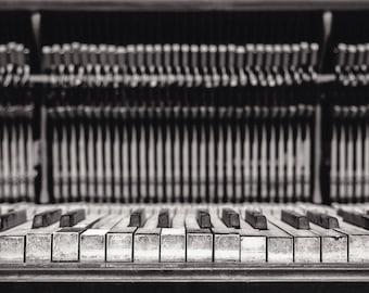"Fine Art Photography, Musical Instrument, Portland Oregon, ""Discarded Keys #1"""