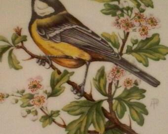 Royal Bayreuth Porcelain Wall Hanging Kohlmeise German European Singing Birds Tettau Atelier Limited Edition 1972