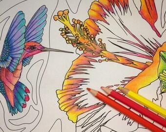 Adult coloring page, Coloring Page, Coloring Page, Hummingbird, Original Coloring Page, Coloring Page Instant Download,