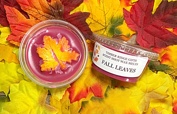 Fall Leaves - Fall Leaves Candle - Fall Wax Melts - Fall Wax Tarts - Fall Scented Candles - Fall Scented Wax Melt - Fall Soy Candle