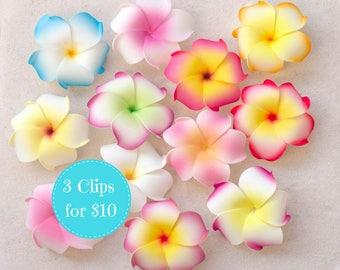Plumeria Hair Clips, Buy 3 for 10, Choose The Colors, Hair Flowers, Tropical Flower Hair Clips