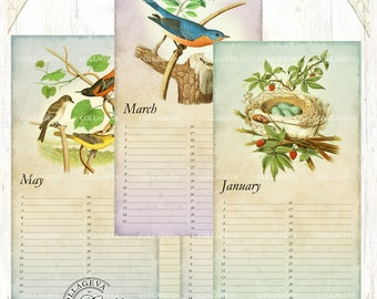 Bird nest egg - Printable Perpetual Birthday Calendar, Anniversary, Eternal Planner, JPEG Editable PDF, Vintage Bluebird Owl Swallow (C017-b