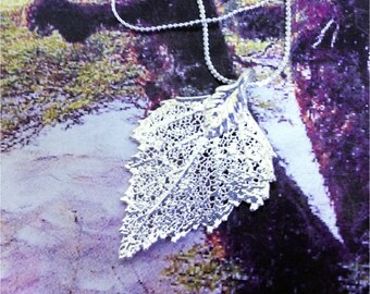 Real Leaf Jewelry, BIRCH leaf, Sterling SILVER dipped leaves,  necklace pendant by natures leaves