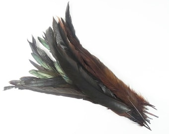 3 Brown Pheasant Tail Feathers Craft Supplies Hat Embellishments Wedding Feathers Costume Feathers Unique Feathers Rare Feathers