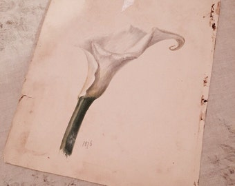 Rachel ashwell shabby chic couture antique lily watercolor painting floral flower