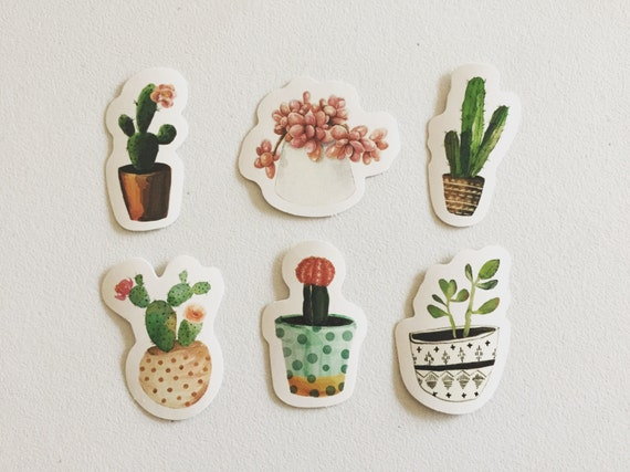 Cactus stickers succulents stickers cacti plants stickers