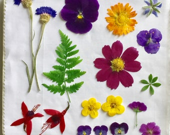 "Flower Press - Microfleur 9x9"" For Pressing Flowers - pressed flowers- pressed leaves - botanical art - colorful flowers - flower art"