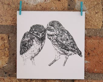 Illustrated Kissing Owls Card
