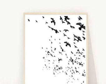 Minimalist Poster, Birds Print, Flock Birds, Black And White Photo, Bird Photography, Printable  Art, Instant Download, Wall Art, Wall Decor
