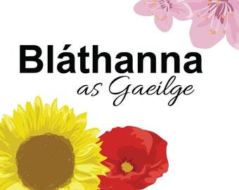 Bláthanna - Flowers - Poster - Doodle - Irish