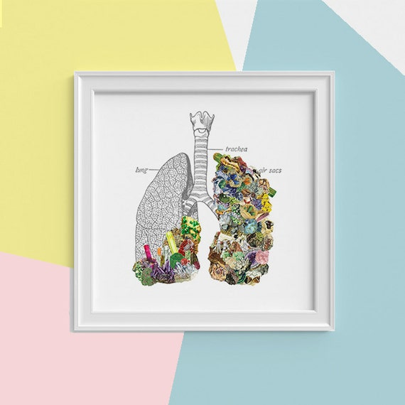 Minerals Human Lungs anatomy Print, wall art, Lungs Science student gift Mineral art print Medicine student gift SKA120SQ1