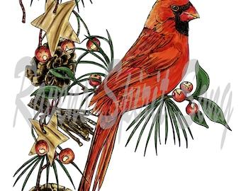 Holiday Cardinal digital stamp