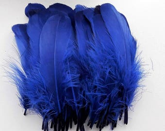 set of 5 feathers blue 15-20cm