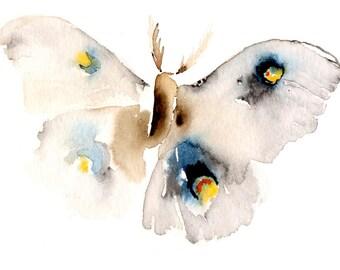 Blank Greeting Card Moth Art Card
