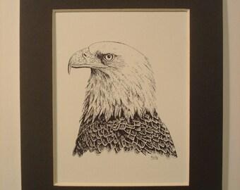 "Bald Eagle print - 5"" x 7"" black mat"