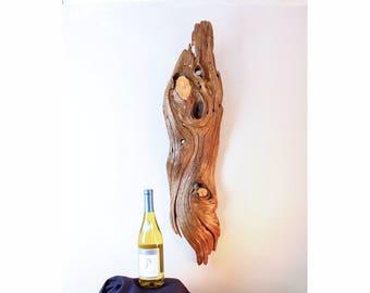 Wood Wall Sculpture, Forest Sculpture , Driftwood Sculpture : Forest Syncopation 18008