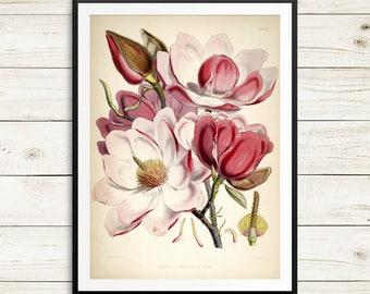 botanical print set, magnolia gifts, magnolia flowers, pink magnolia print, magnolia print set, magnolia wall art, watercolor magnolia print