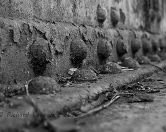 Rivets and girders
