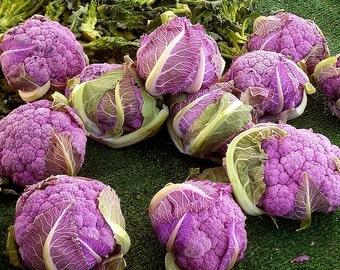Organic Heirloom 30 seeds Purple Cauliflower Garden Vegetable seed F26