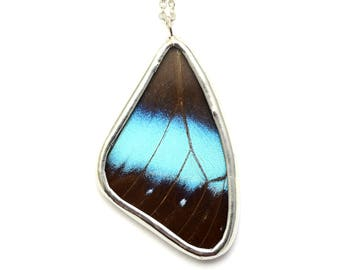 Real Butterfly Wing Necklace Morpho Helenor Butterfly Pendant Black and Blue Butterfly Jewelry Girlfriend Gift