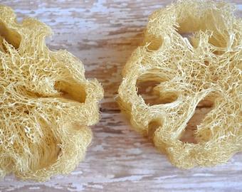 All Natural Loofah Sponge