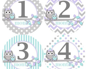 Baby Monthly Milestone Growth Stickers in Lavender Aqua Grey Owls MS326 Nursery Theme Baby Shower Gift Baby Photo Prop